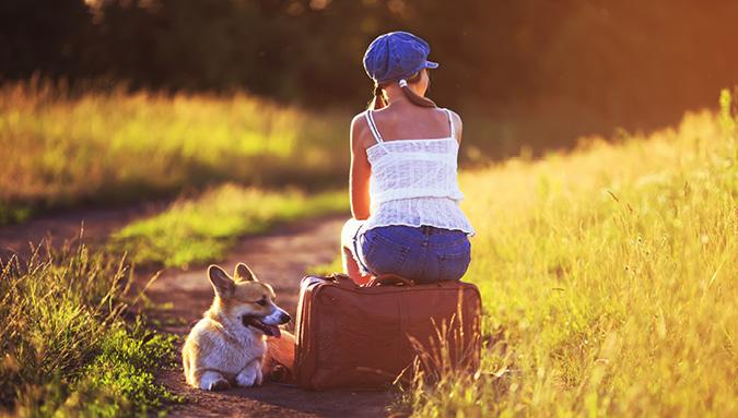 Transfer mit Hund